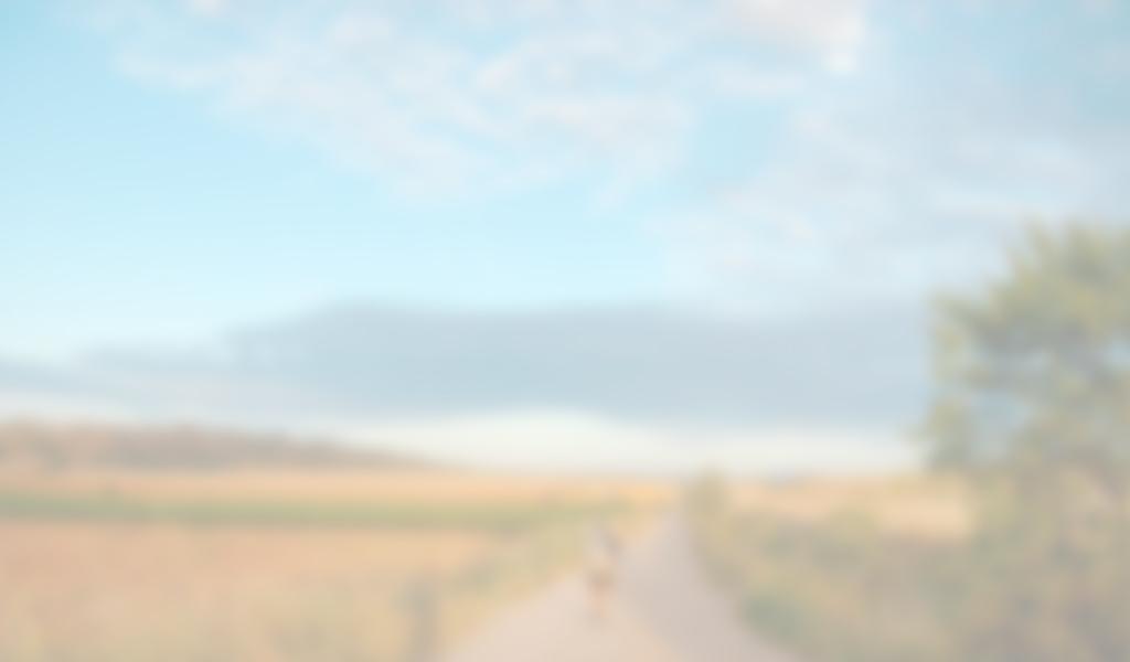 wieviele kilometer von lindau nach passau