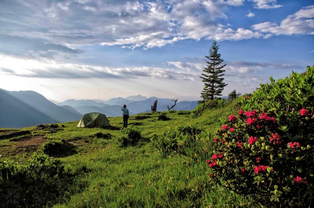 Latschurgruppe , Gailtaler Alpen: Auf der Stosia von M. Marktl, 2013