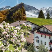 Gasteinertal_Haus Fotomontage1