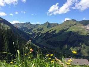 Weitwandern KAT Walk Kitzbüheler Alpen Tirol 1