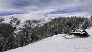 01 - Alpine Einzelhaft