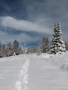 02 - Spuren im Schnee (Large)