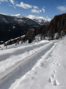 07 - Noch ein Winterwanderer unterwegs (Large)