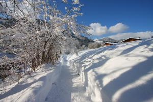 Winterwandern im Salzburger Saalachtal (c) TVB Lofer