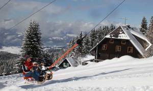 Bergauf-Rodeln im Naturpark Zirbitzkogel Grebenzen - (c) Tonnerhütte