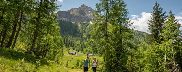 wandern-steinkaralm-c-wagrain-kleinarl-tourismus-lorenz-masser (13)