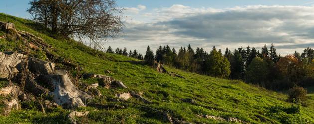 Weitwandern in der Region Mittelkärnten Bild: Norischer Panoramaweg (c) Arnold Poeschl