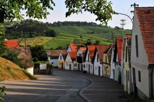 Weitwandern u Pilgern Jakobsweg Weinviertel Kellergasse Falkensteig (c) Weinviertel Tourismus - Mandl