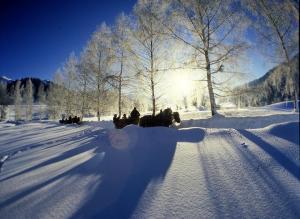 Winter rund um den Thayatalweg (c) Waldviertel Tourismus