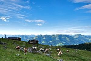 Wandern und Weitwandern auf der Kaiserkrone - Hochalm c) TVB Wilder Kaiser Tirol, Marion Bichler