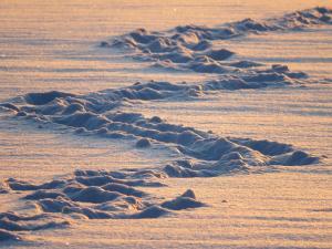 Spuren im Schnee2, pixabay