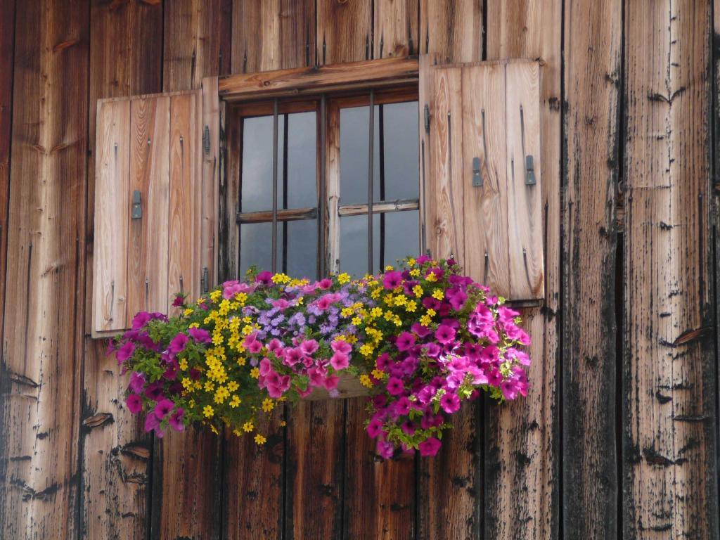 finestra-2077969