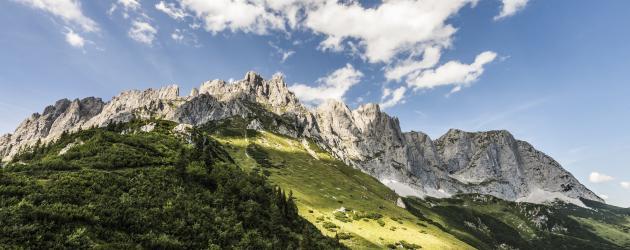 Panorama Sommer_Wilder Kaiser_Foto von Felbert_Reiter (3)