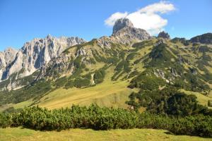 filzmoos-salzburger-almenweg-weitwandern-österreich
