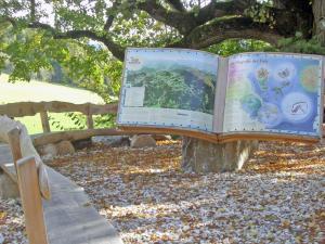 Naturlese Buch in St. Blasen
