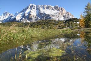Das Biotop Rit See, © La Val