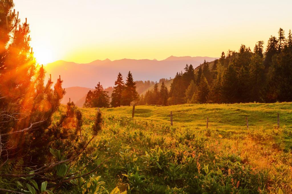 Die letzten Sonnenstrahlen genießen © Coen Weesjes