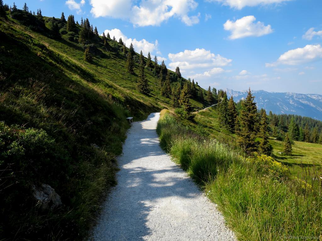 Die Etappe 5 endet mit einem gemütlichen Schotterweg Richtung Planai