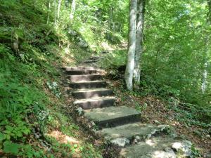 Etappe7-Wanderung-Soleweg-Stufen-Foto-Ebenlechner-Petra