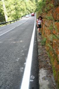 Etappe7-Wanderung-Soleweg-Umleitung-Fu+ƒabdr++cke-Foto-Ebenlechner-Petra