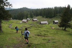 Etappe8-Wanderung-Goisererh++tte-Almgebiet-Foto-Katharina-Scherz