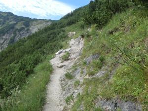 Etappe8-Wanderung-Goisererh++tte-Weg-Foto-Ebenlechner-Petra (4)