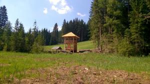 Ankunft beim Dürnberger Moor, © Naturpark Zirbitzkogel-Grebenzen