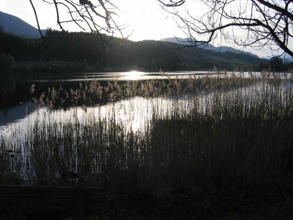 Den Abend und den Sonnenuntergang am Furtner Teich genießen