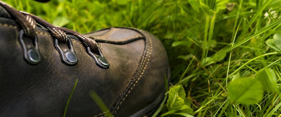 Wanderschuh im Gras, pixabay
