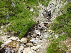 Bis ins Tal hinunter fließen kleine Bäche