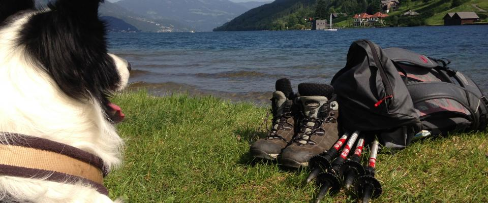 Wandern mit Hund am Alpe Adria Trail (c) Trail Angels GmbH