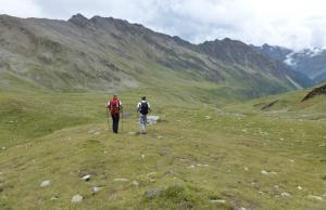 Herz Ass Villgratental Osttirol