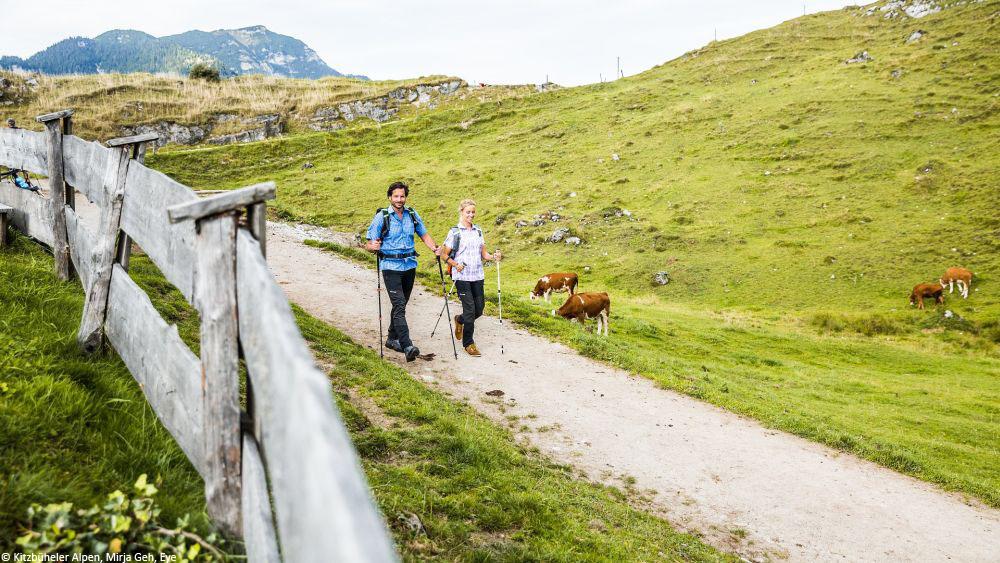© Kitzbüheler Alpen, Mirja Geh, Eye