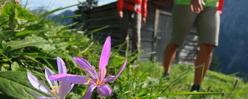 Frühlingserwachen am Lechweg©lechweg
