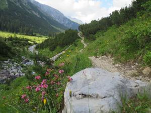 2018_Lech am Arlberg_Weitwandern_Lechweg_1 Etappe (47)