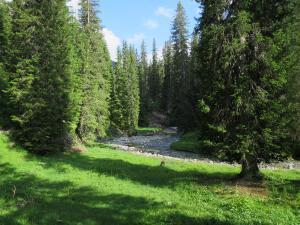 2018_Lech am Arlberg_Weitwandern_Lechweg_1 Etappe (65)