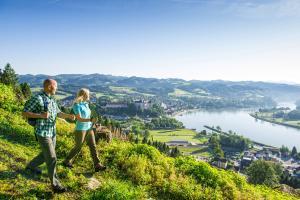 Blick auf Grein ©WGD Donau Oberösterreich Tourismus GmbH, Erber