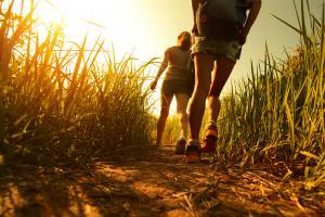 Wandern der Sonne entgegen © shutterstock