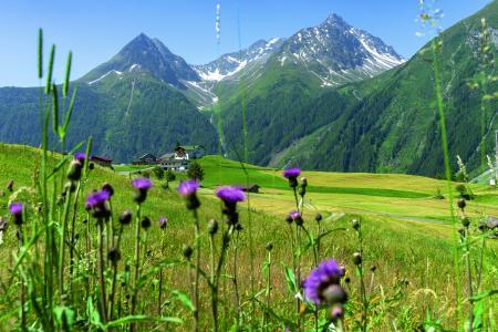laeng_burgstein-Frühling-©-Ötztal-Tourismus.jpg