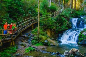 Graggerschlucht_(c)TVB Naturpark Zirbitzkogel-Grebenzen, Mediadome (12)