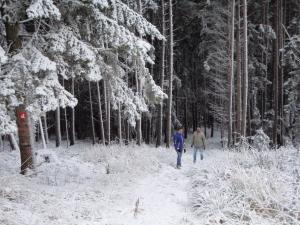 Wandern im Winter am Alpannonia 2 © Hans Peter Neun