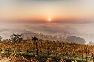 Herbstlandschaft bei Krems © Donau Niederösterreich / Robert Herbst