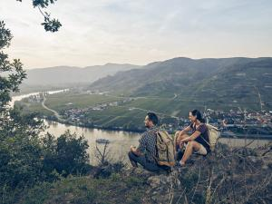 Ausblick ins Weltkulturerbe Wachau © Donau Niederösterreich / Andreas Hofer
