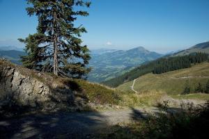 etappe-2-kat-walk6 © Kitzbüheler Alpen Marketing GmbH