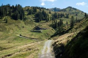 etappe-2-kat-walk © Kitzbüheler Alpen Marketing GmbH