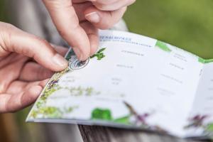kraeuteralmen-sammelpass ach du grüne Neune © Nicola Woisetschläger, Hochkönig Tourismus GmbH