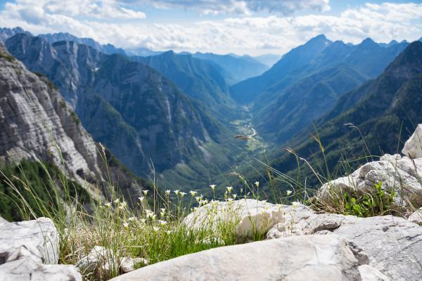 Trenta Slowenien © shutterstock